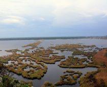Λιμνοθάλασσα Προκόπου