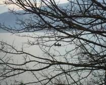 Λίμνη Κερκίνη 02.01.2016