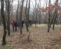 Δάσος Μογγοστού Κορινθίας 25.02.2018