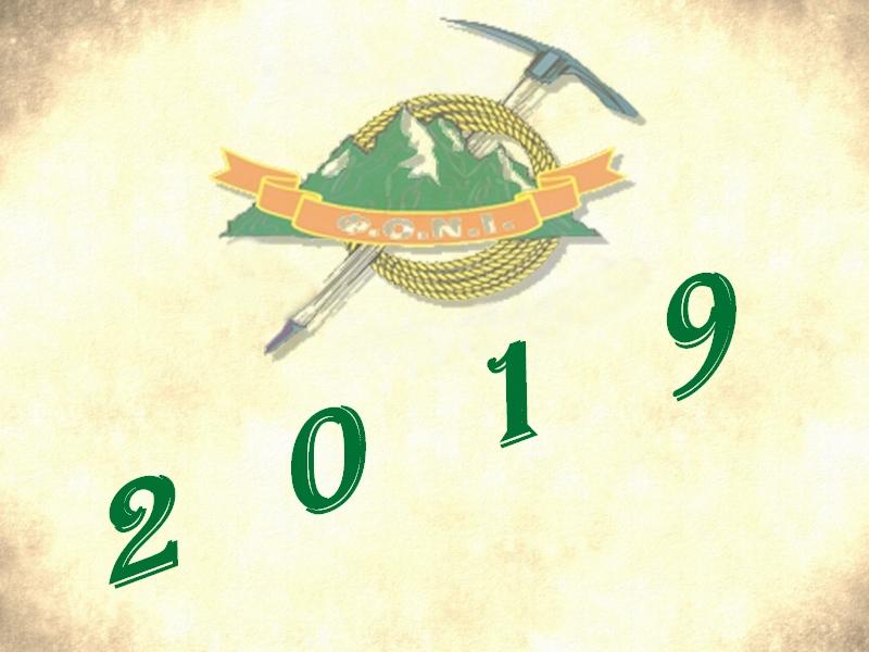 Έτος 2019