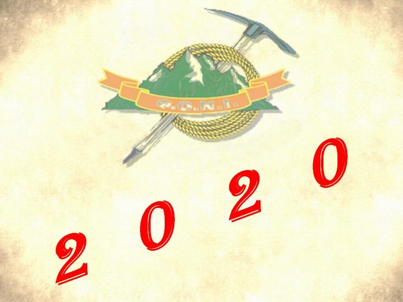 Έτος 2020